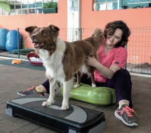Personal trainer per il cane