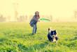 Giocare con il cane