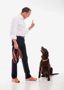 Addestrare il cane