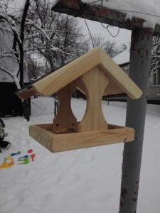 come aiutare gli uccelli in inverno