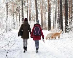 la passeggiata del cane