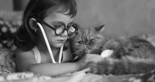 Formazione veterinaria