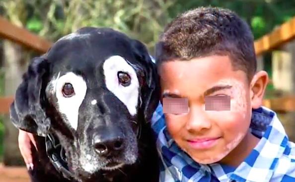Bambino amico di un cane