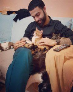 pianista 9 gatti