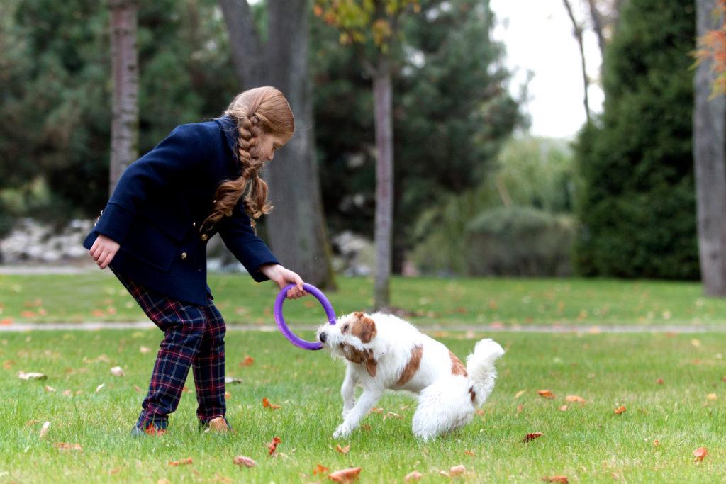 puller gioco cani fortesan