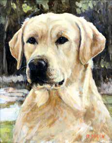 ritratto di cane oiraw