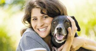 adotta un cane adulto