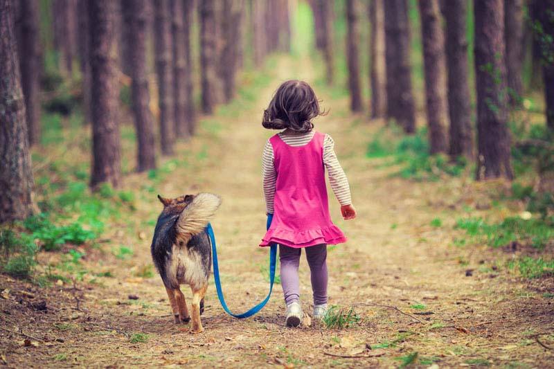 rapporto bambini animali