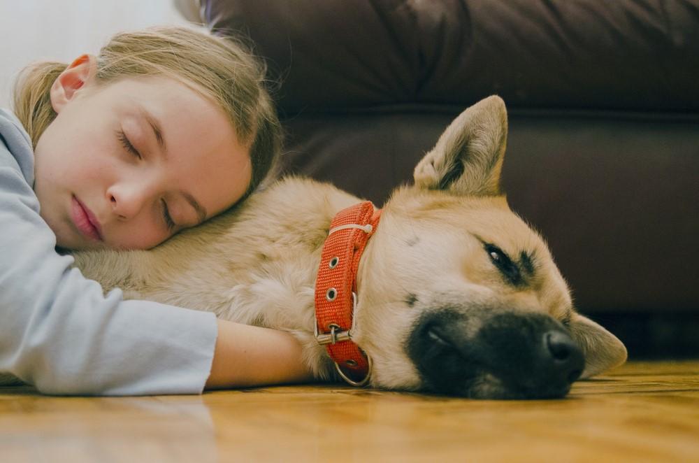 convivenza sicura cani bambini