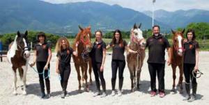 master trainer cavalli