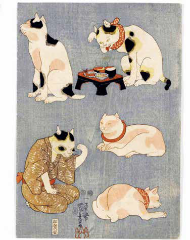 gatti giapponesi