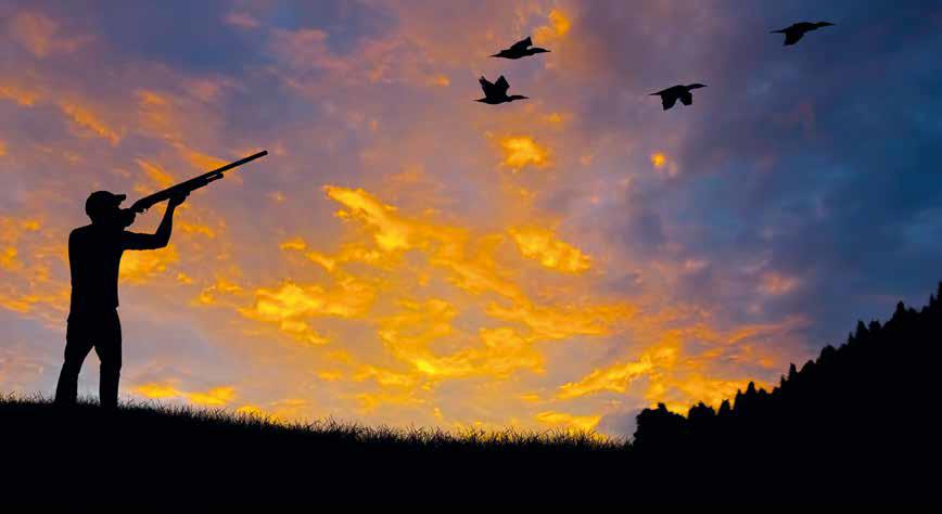 fermare caccia