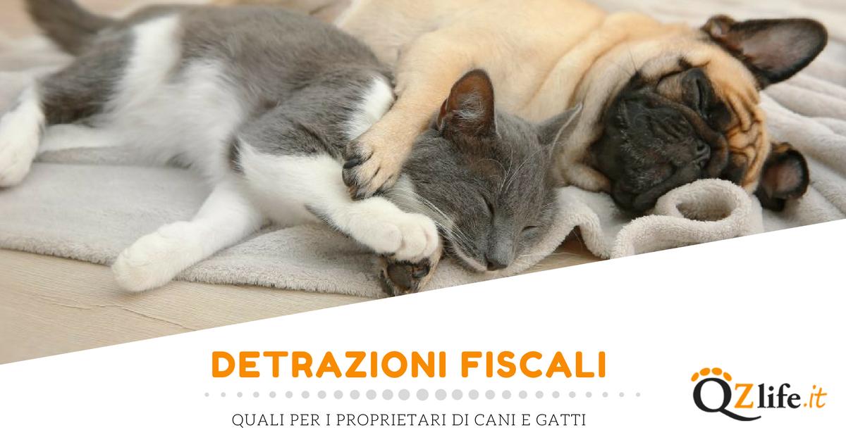 Bonus e detrazioni fiscali proprietari quattro zampe for Detrazioni fiscali per ristrutturazione 2017