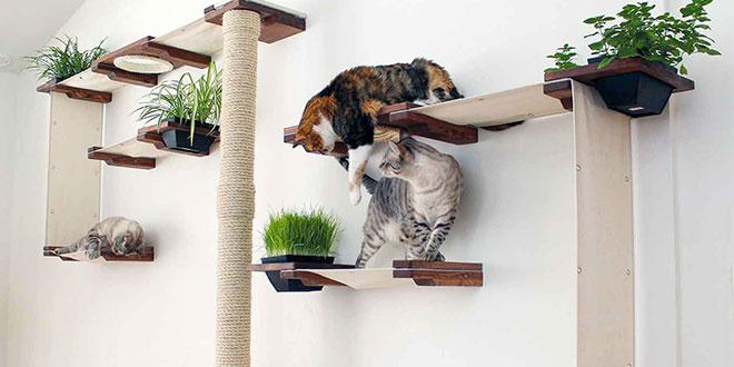 Arredamento per cani e gatti senza rinunciare al design for Arredamento per gatti