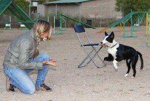 claudia fugazza cani cuccioli