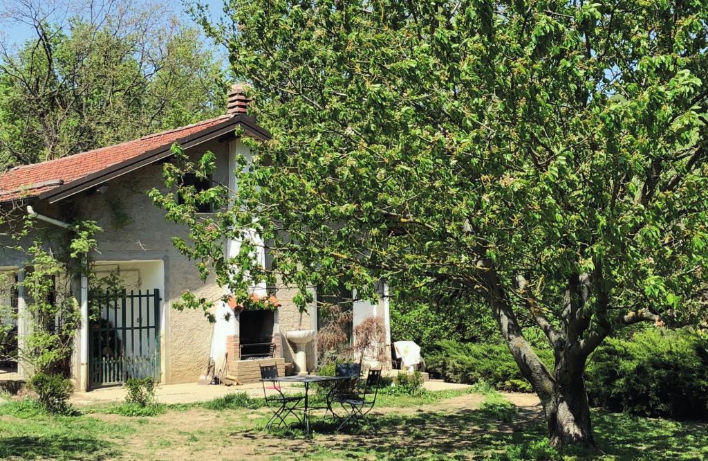 ohana ranch