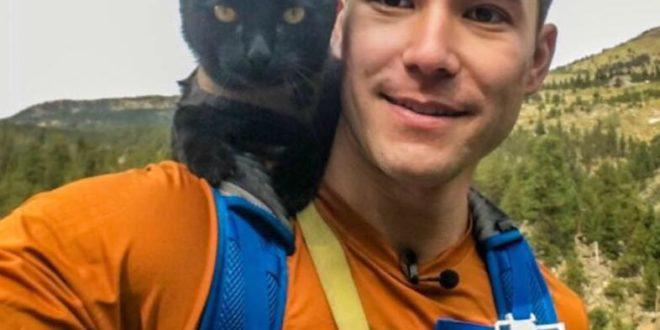 simon gatto avventura