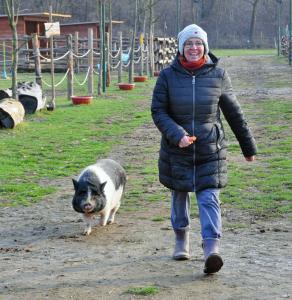 fattoria animali famiglia