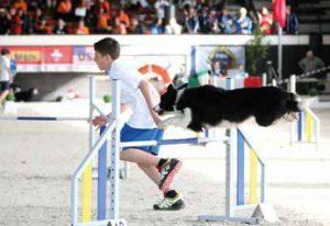 world agility championship