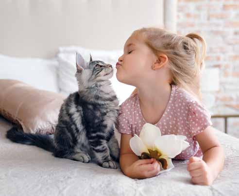 bambino e gatto