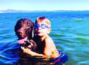 in spiaggia con il cane