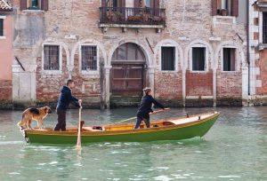 venezia pet friendly