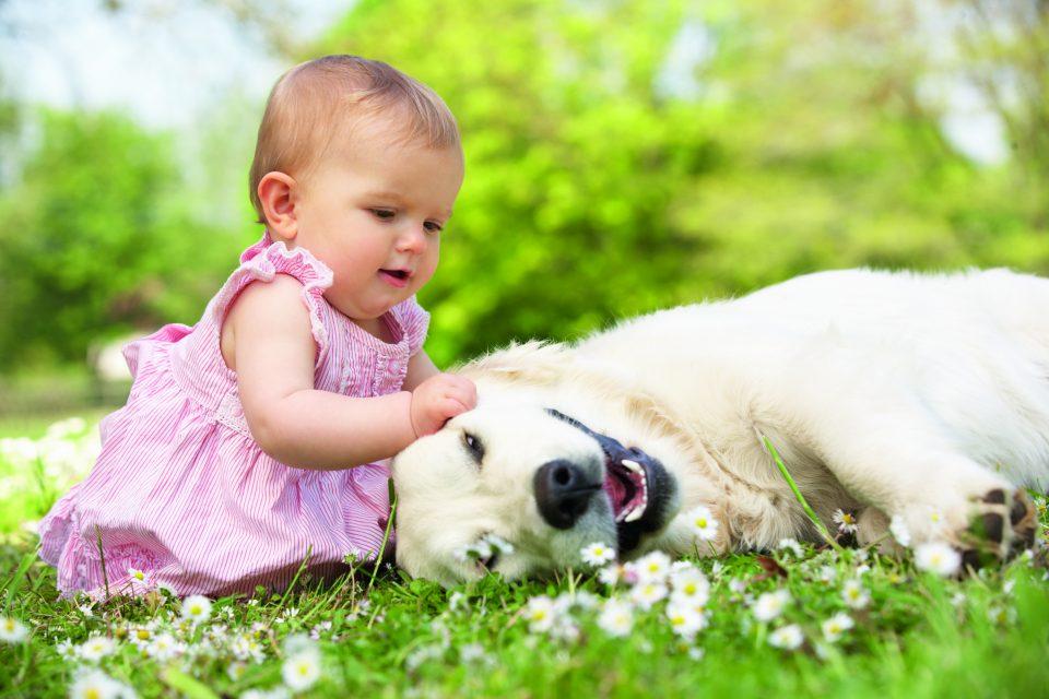 convivenza-cane-e-bambino