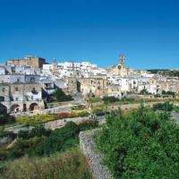 A Manduria, in Puglia, il vino Primitivo che fa la storia