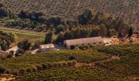 Ceraudo Azienda Agricola