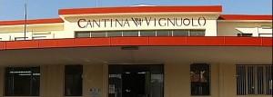 Cantina_Vignuolo