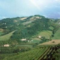 Azienda Agricola Giuseppe Beghelli
