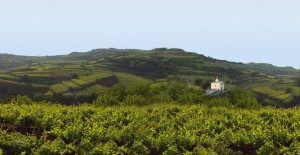 montecrocetta
