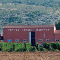Cataldi Madonna: una cantina emblema d'Abruzzo