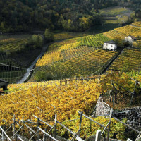 Val di Cembra per un weekend in Trentino