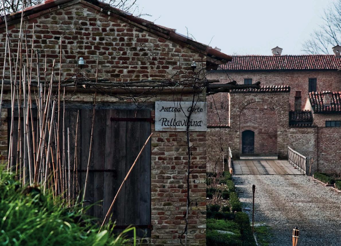 Nella terra del Lambrusco: benvenuti in Emilia