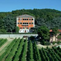 Tenuta Pandolfa: dove il vino è cultura