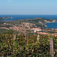 La costa adriatica, tra Italia e Slovenia
