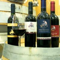 I vini di Grifalco prodotti a Genzano, in Lucania e a Montepulciano