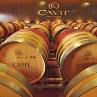 Cavit fornitore ufficiale di Casa Italia alle Olimpiadi 2012
