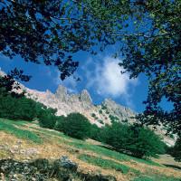 Il Parco delle Madonie: tra mare e monti