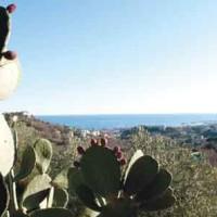 Gita di primavera: la Riviera di Ponente ci aspetta!