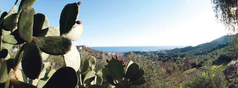 Gita di primavera: Riviera di Ponente