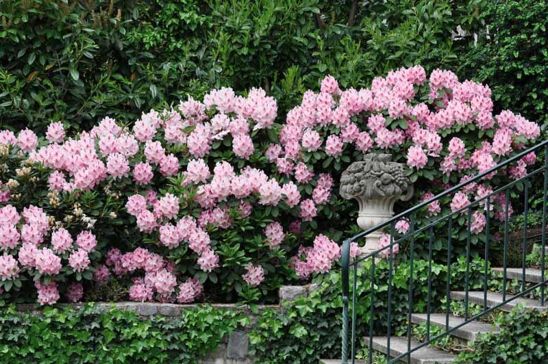 Giardino art craft ville casali - Quando seminare erba giardino ...