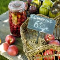 Frutta e colore nel giardino della casa di campagna