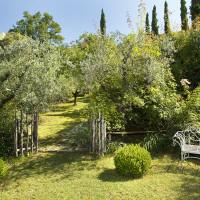 Mille rose umbre nel giardino di Rita Oliva