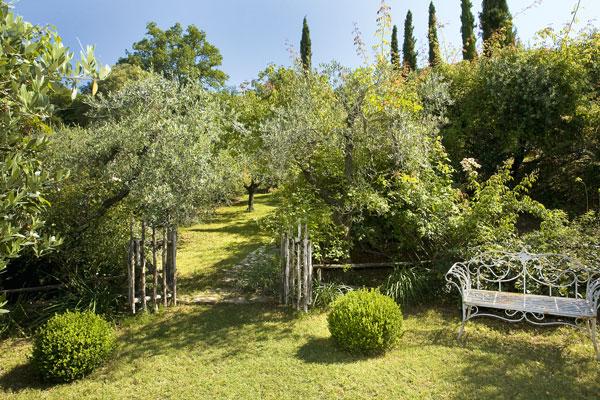 Giardino-Rita-Oliva