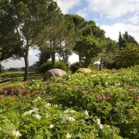 Altro angolo del giardino segreto a Roma