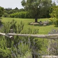 Scorcio del giardino mediterraneo della villa