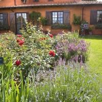 Profumi e sfumature nel giardino della Massini