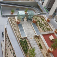 Iglù Green Roof di Daliform Group: nuovi giardini in città